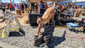 Cougar mountain lion chainsaw carving.